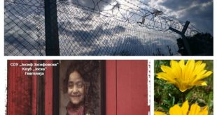 borders-foto